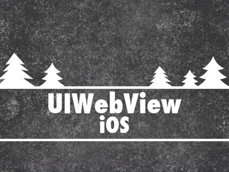 uiwebview-1.jpg