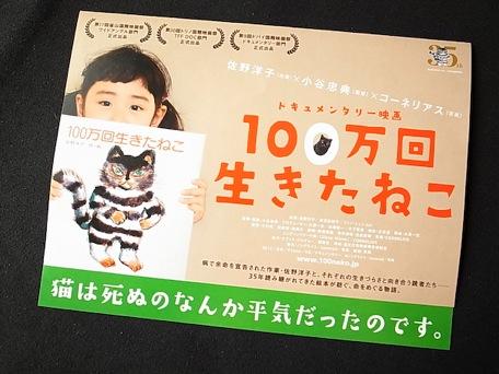 movie_100neko-4.jpg