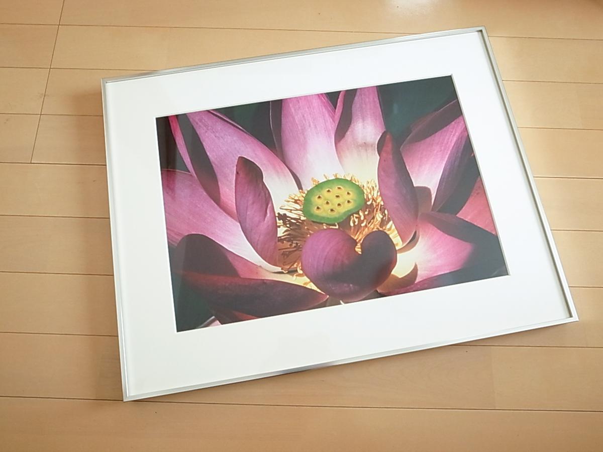 「第8回 総合写真展」入選!