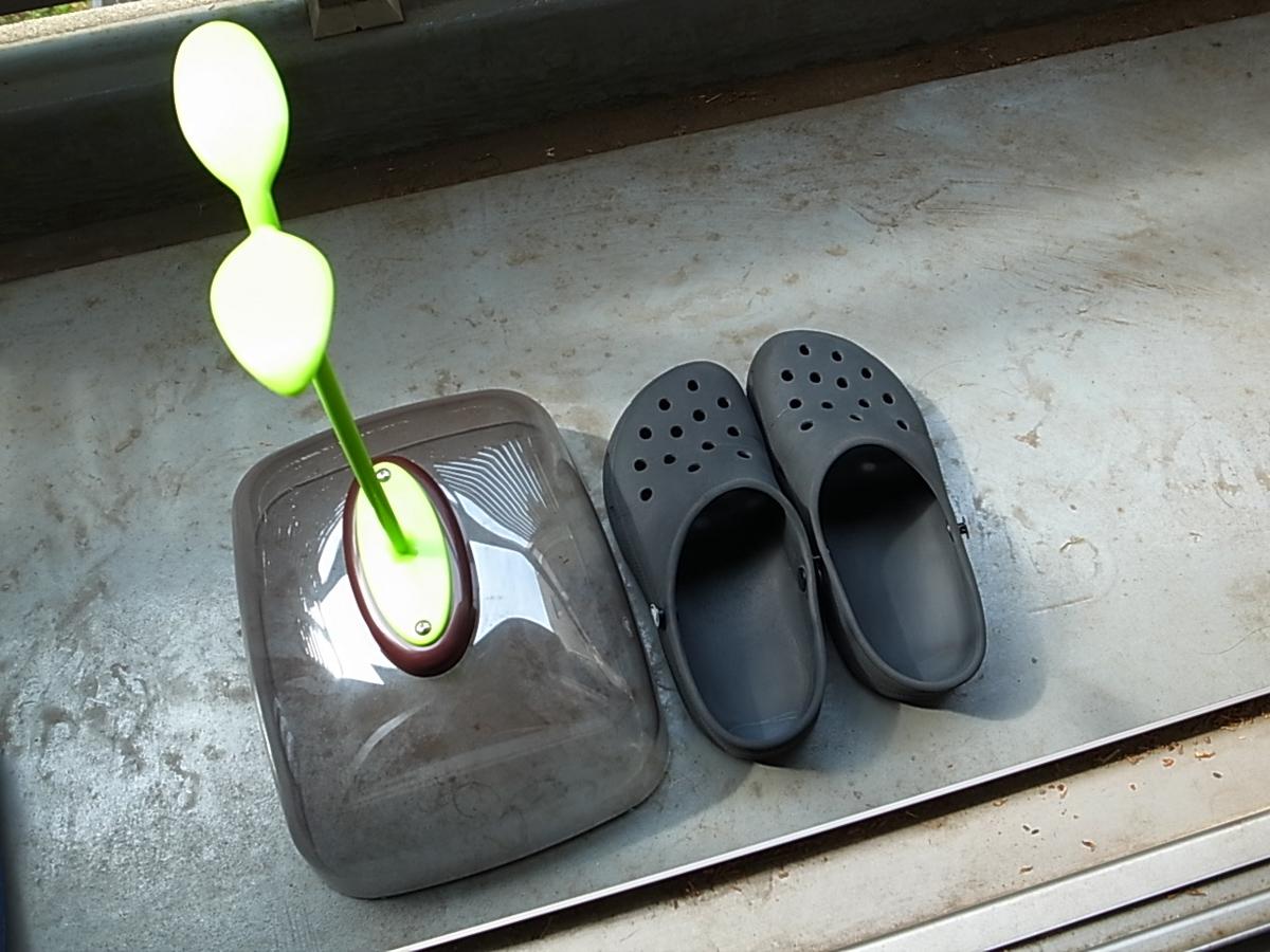 Sandals cover futaba 5
