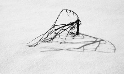 雪オブジェ2