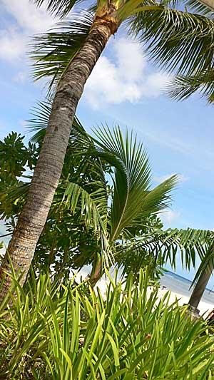 グアム風景